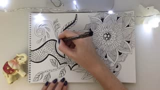 Zentangle zenart doodling mandala relax speed art video  - Video