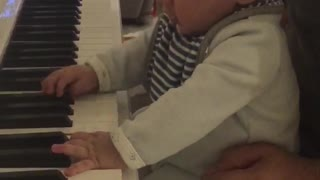 Amazing 5 Months old plays the piano with two hands - Video