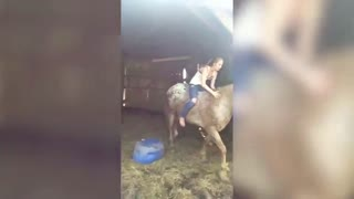 Bad Relationship With Horse Leads to... - Video