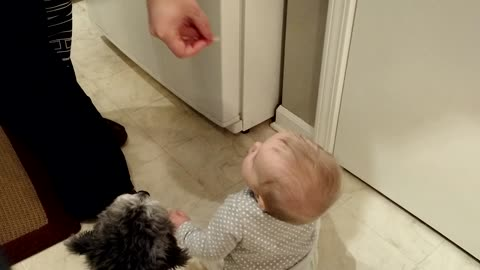 Baby and puppy receive snacks