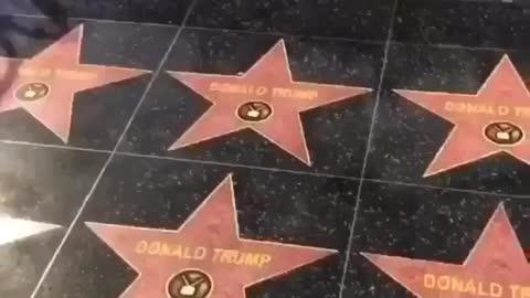 All Hollywood Walk of Fame Stars Around Pres. Trump Changed!