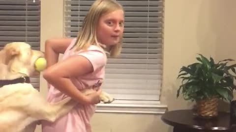 Hilarious playtime between little girl and doggy caught on camera