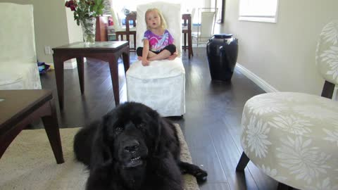 Adorable duet between giant dog and little girl