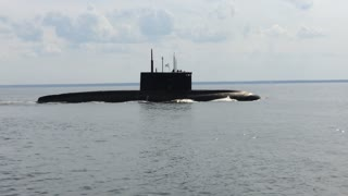 Not every day you see floating near the submarine  - Video
