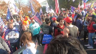 Million Maga March, Washington D.C. Greatest Hits