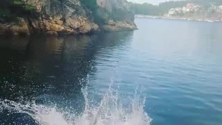 Collab copyright protection - man flops after jumping off boat