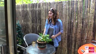 Small patio makeover with Elissa the Mom | Rare Life - Video