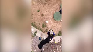Water Balloon Trick Goes Unexpectedly Wrong - Video
