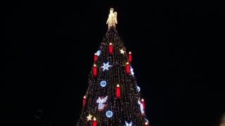World's biggest Christmas tree lights up in Germany - Video