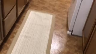Little girl pajama dress runs into kitchen and falls