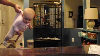 Dad Pretends To Play Quidditch With Baby Girl