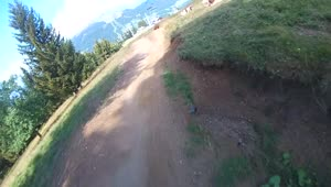 Mountain biker almost lands on a cow - Video