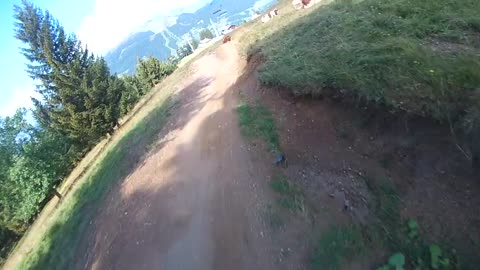 Speedy Mountain Biker Films Moment When He Nearly Lands On A Cow