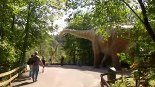 German scientists find rare dinosaur tracks - Video