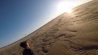Guy runs right threw large flock of seagulls - Video