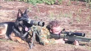 Best of Military Humor/Pranks - Video