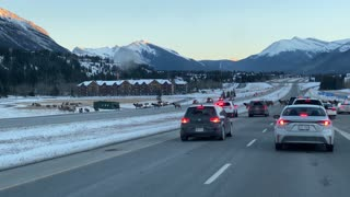 Over 80 Elk Crossing Canmore Highway with Police Escort