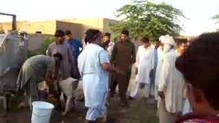 man dancing in pakistan village  - Video