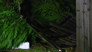 Southwest Atlanta Tornado Damage - Video