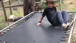 Collab copyright protection - black grey trampoline breaks
