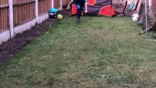 Little kid reenacts Gylfi Siggurdson's amazing goal against West Ham