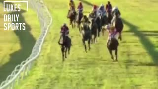 Kangaroo In A Horse Race! - Video
