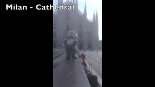 Man brings 'dancing cat' on European vacation - Video