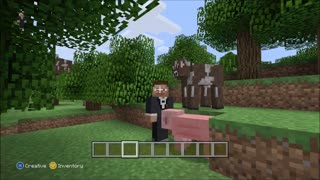 Minecraft (Funny Selfies) - Video