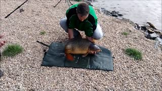 Huge Carp Isn't Going To Let Any Fisherman Take It Away - Video