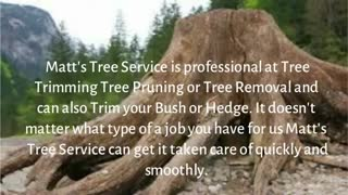 Tree Services - Video
