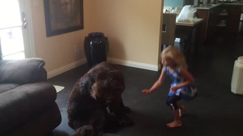 Little girl's response to dog is too cute!!