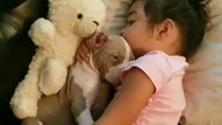Adorable puppy preciously cuddles with little girl - Video