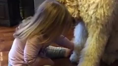 Little Girl Adorably Trains Her Puppy