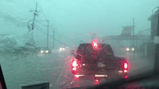 Tiiiimmmbeerrrrrrrr! (Nasty weather in New Orleans - Timber!) - Video