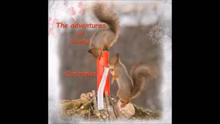 Squirrel movie from the book Christmas by Geert Weggen - Video