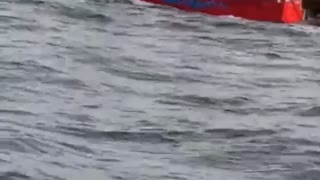 Head First Off a Fishing Boat Fail