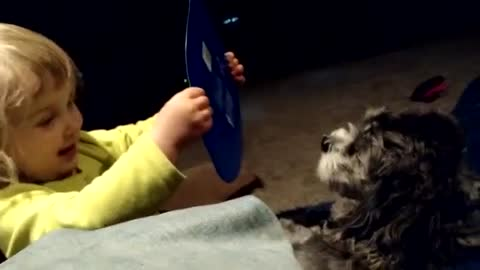 Puppy completely fascinated by toddler's story
