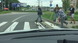 Mama Duck and Ducklings Use Crosswalk - Video