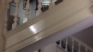Guy in black shirt jumps from stairs and falls down - Video