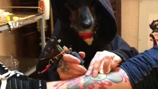 Tattoos By the Doggfather - Video