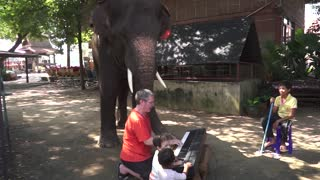 'Happy Birthday' Piano Duet with Peter the Elephant