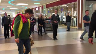 Tiger Walks on a Leash Through a Shopping Center - Video