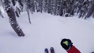 Daredevil Shares POV Footage Of Him Fearlessly Skiing Through Forest - Video