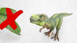Learn about DINOSAURS!