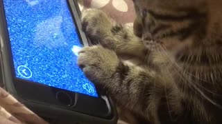 Tattoo loves playing games on phones