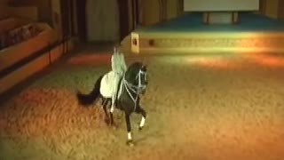 Rare red Friesian dances beautifully with his rider - Video