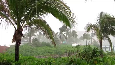 Bahamian Tropical Storm