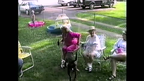 Sprinting Dogs Take Out Kid During Backyard Party
