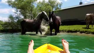 Woman on raft hangs out with horses in pond
