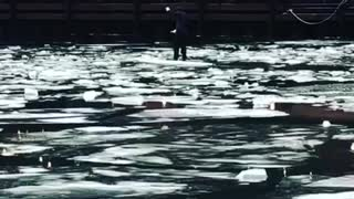 Guy paddleboards in chicago river after the polar vortex